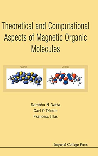 9781908977212: Theoretical and Computational Aspects of Magnetic Organic Molecules