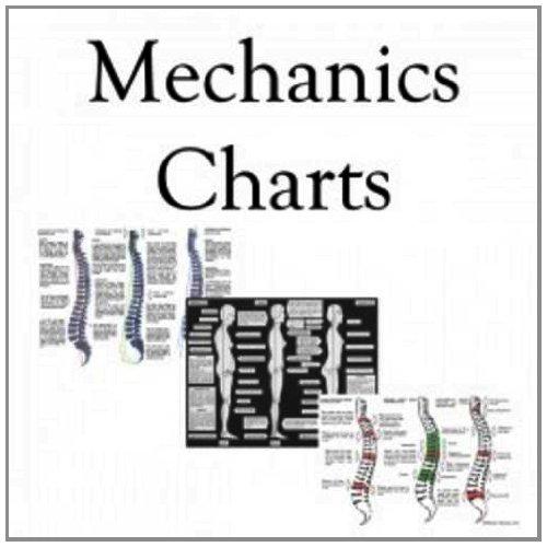 9781909052451: Posture Chart