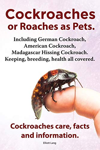 9781909151680: Cockroaches as Pets. Cockroaches Care, Facts and Information. Including German Cockroach, American Cockroach, Madagascar Hissing Cockroach. Keeping, B