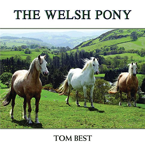 9781909339026: The History of the Welsh Pony