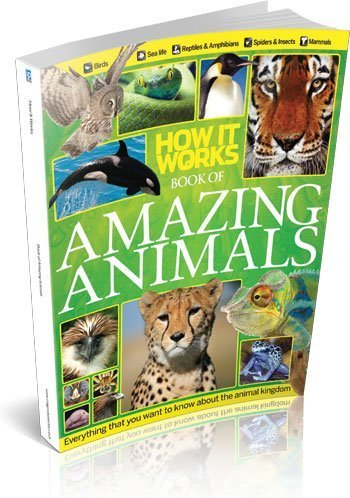 9781909372764: How It Works Book of Amazing Animals Revised Edition