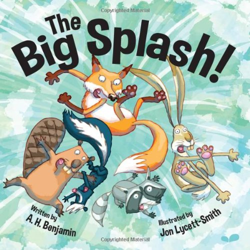 9781909428324: The Big Splash!