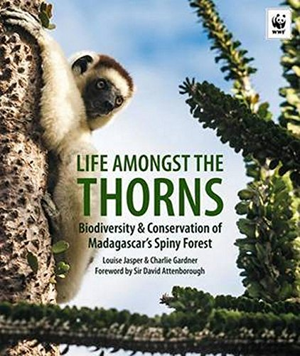 9781909612679: Life Amongst The Thorns: Biodiversity & Conservation Of Madagascar's Spiny Forest