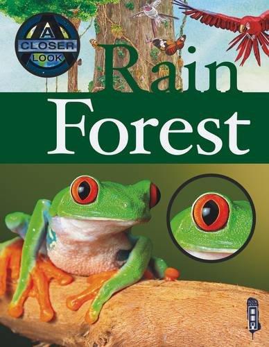 9781909645769: A Closer Look At: Rainforest