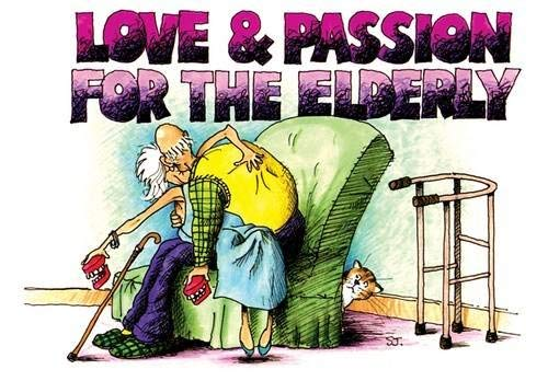 9781909732087: Love and Passion for the Elderly