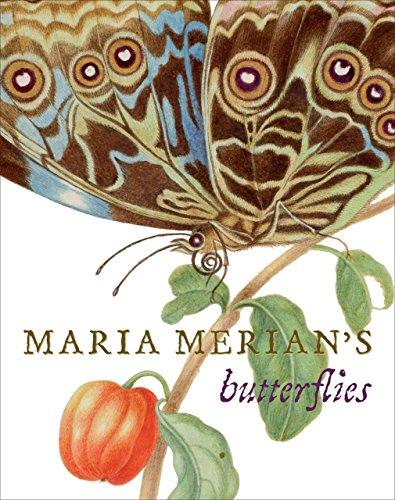 Maria Merian's Butterflies: Kate Heard