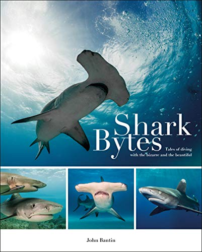 9781909911451: Shark Bytes: Tales of Diving with the Bizarre and the Beautiful