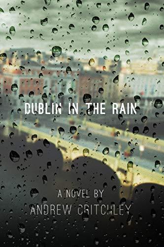 9781910053508: Dublin in the Rain