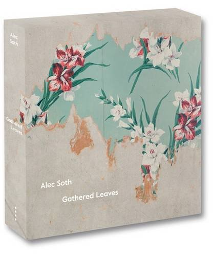 Gathered Leaves: Sleeping by the Mississippi/Niagra/Broken Manual/Songbook/signed: Alec Soth