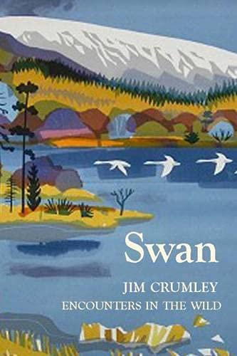 9781910192122: Swan (Encounters in the Wild)