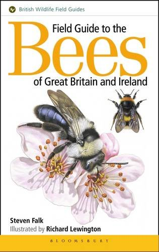 9781910389027: Field Guide to the Bees of Great Britain and Ireland
