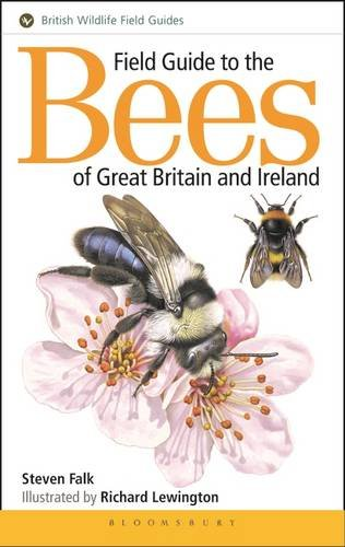 9781910389034: Field Guide to the Bees of Great Britain and Ireland