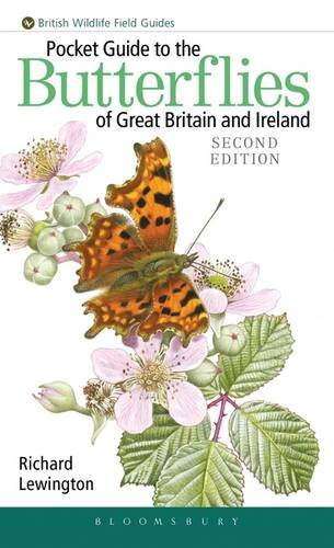 Pocket Guide to the Butterflies of Great Britain & Ireland: Lewington, Richard