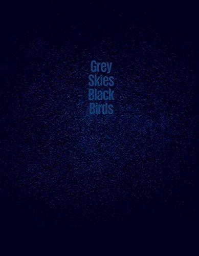 9781910401057: Grey Skies, Black Birds