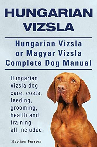 Hungarian Vizsla. Hungarian Vizsla or Magyar Vizsla: Burston, Matthew