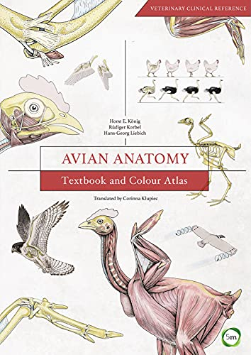 Avian Anatomy: Textbook and Colour Atlas (Hardback): Horst Erich König,