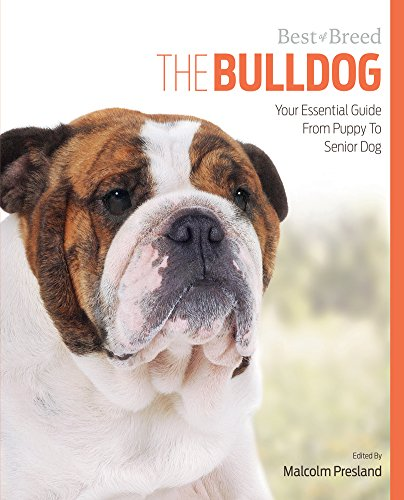 Bulldog Best of Breed: Presland, Malcolm