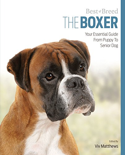 Boxer Best of Breed: Matthews, Viv