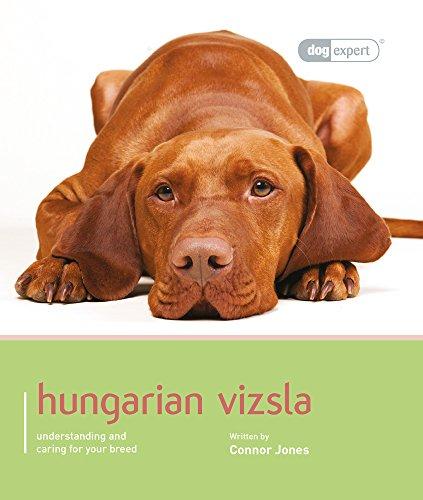 Hungarian Vizsla - Dog Expert: Various