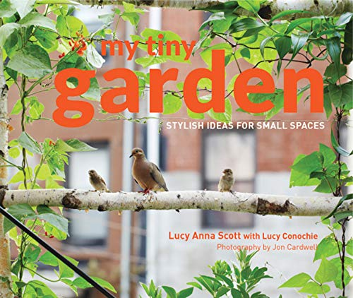9781910496541: My Tiny Garden: Stylish Ideas for Small Spaces