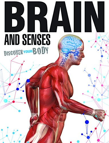 Brain and Senses (Discover Your Body): Green, Jen