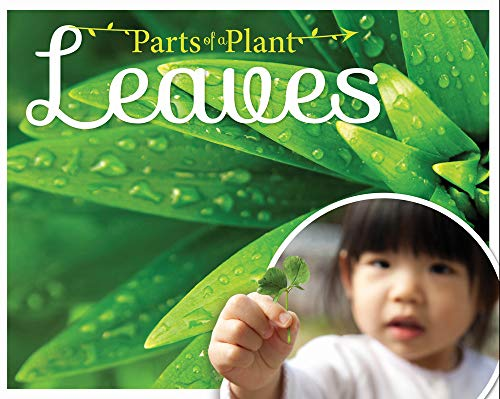 Leaves (Parts of a Plant): Gemma McMullen