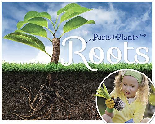 Roots (Parts of a Plant): Gemma McMullen