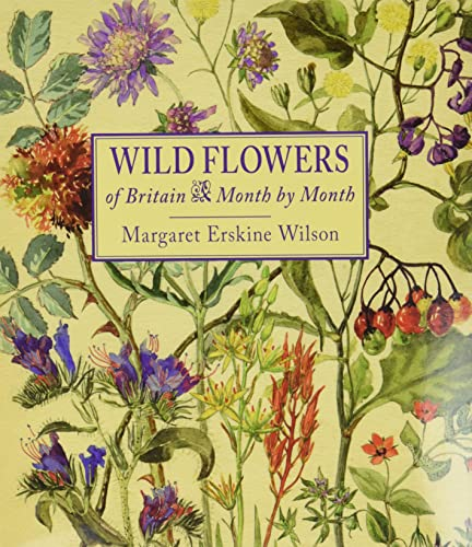 9781910723319: Wild Flowers of Britain: Month by Month
