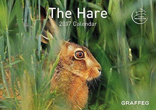9781910862346: The Hare 2017 Calendar