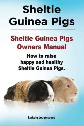 Sheltie Guinea Pigs. Sheltie Guinea Pigs Owners Manual. How to raise happy and healthy Sheltie ...