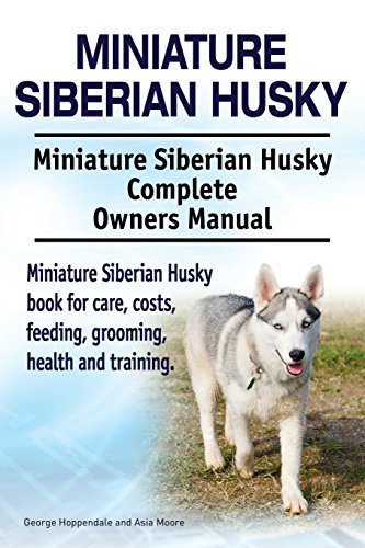 9781912057535: Miniature Siberian Husky. Miniature Siberian Husky Complete Owners Manual. Miniature Siberian Husky book for care, costs, feeding, grooming, health and training.