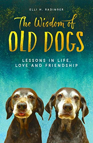 9781912624744: The Wisdom of Old Dogs: Lessons in life, love and friendship