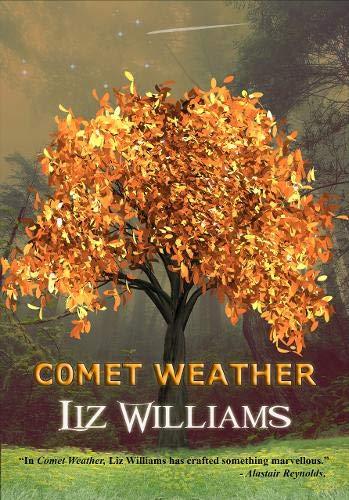 9781912950454: Comet Weather