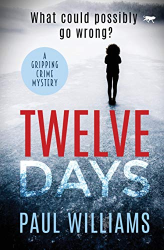 9781913419127: Twelve Days: a gripping crime mystery