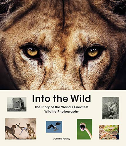 Gemma Padley, Into the Wild