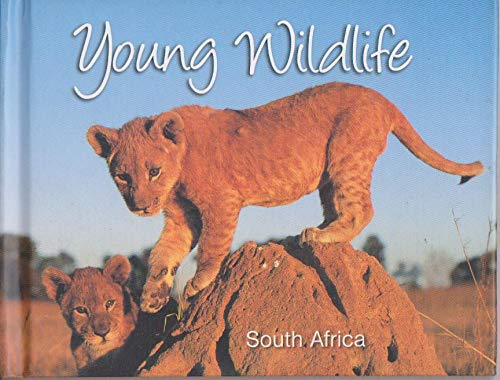 9781919688596: Young Wildlife South Africa