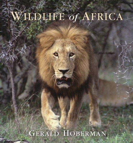 9781919734385: Wildlife of Africa