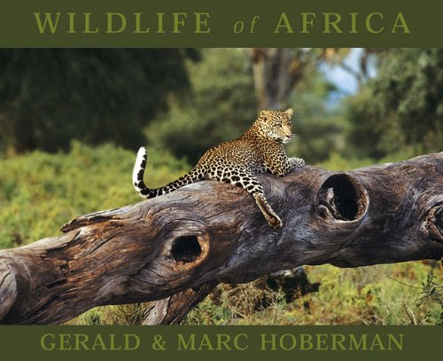 9781919734538: Wildlife of Africa (Mighty Marvellous Little Books)