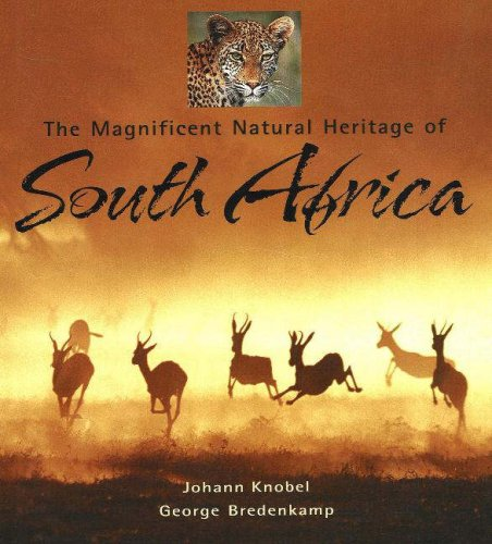 9781919938387: The Magnificent Natural Heritage of South Africa