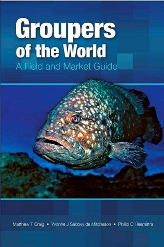 Groupers of the World: A Field and Market Guide: Craig, T., Sadovy De Mitcheson, Yvonne, Heemstra, ...