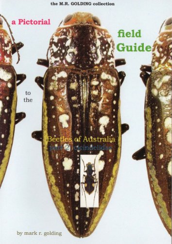 9781920783785: A Pictorial Field Guide to the Beetles of Australia (Part 2) Cicindelidae