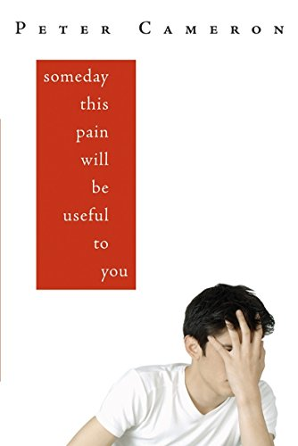 9781921372148: Someday This Pain Will be Useful to You