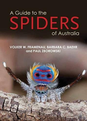 9781921517242: A Guide to Spiders of Australia