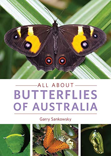 All About Butterflies of Australia: Sankowsky, Garry