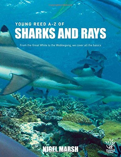 9781921580307: A-Z Sharks and Rays (Young Reed)