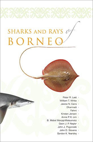 9781921605598: Sharks and Rays of Borneo