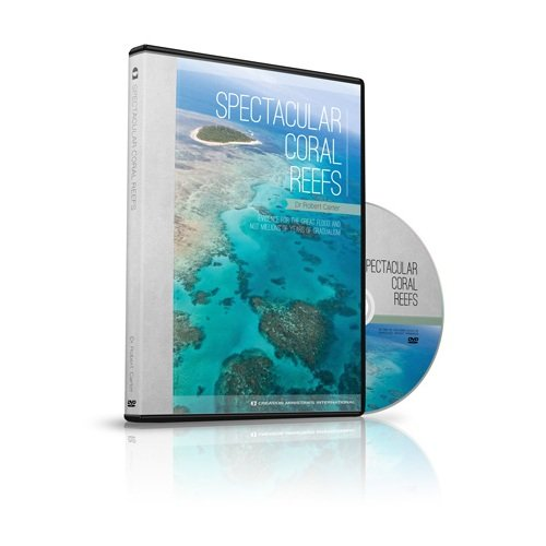 9781921643576: Spectacular Coral Reefs