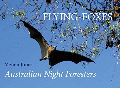 Flying-Foxes: Australian Night Foresters (1922013552) by Jones, Vivien