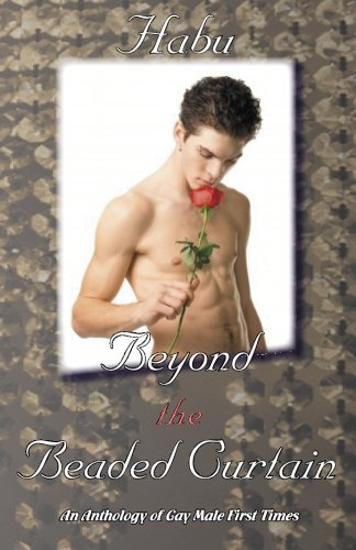 Beyond the Beaded Curtain: An Anthology of Gay First Times: habu