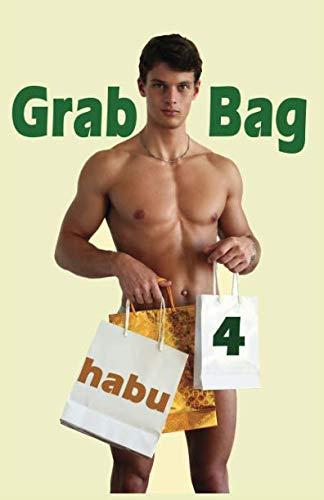 9781922187536: Grab Bag 4: A Gay Erotica Anthology (Grab Bag Gay Erotica Anthologies) (Volume 4)